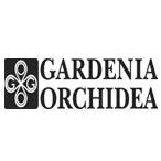 Gardenia Orchidea (Италия)